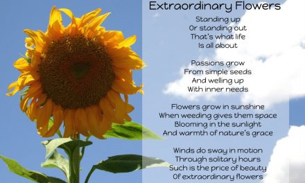 Extraordinary Flowers